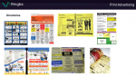 Directories Ad Examples - Print Advertising - Ringba's Pay Per Call Masterclass.png